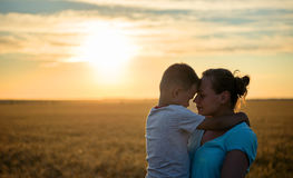 Happy mother kisses on the forehead baby holding on a wheat field in sunlight, family in a wheat field On the Sunset. royalty free stock images