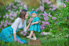 Happy mother mom with daughter enjoying time on a awesome place between lilac syringe bush.Young ladies with basket full of flower. S dressed in jeans and royalty free stock image