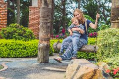 Happy mother pushing laughing son on swing in a park.  Royalty Free Stock Photo