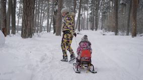 Happy mother quickly stepping on the path and pulling sleigh with her daughter in winter forest. Two cute sisters are stock video footage