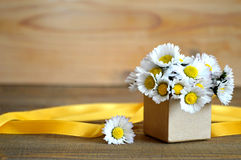 Happy Mother's Day card: Daisy flowers arranged in gift box Stock Photography