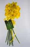 Happy Mother's Day Daffodil Bouquet Royalty Free Stock Images