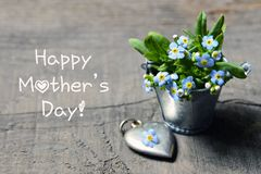 Happy Mother`s Day.Forget-me-not flowers in small metal bucket and vintage silver heart on old wooden table. Selective focus royalty free stock image