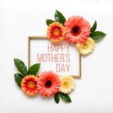 Happy Mother`s Day Living Coral Pantone Color Background. Flat lay greeting card with beautiful coral hue gerbera flowers. royalty free stock photography