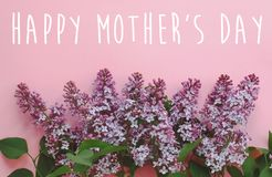 Happy mother`s day text, greeting card. beautiful lilac purple f. Lowers on pink background, flat lay with space for text. modern image. top view. stylish royalty free stock image