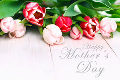 Happy mother's day text sign on pink tulips on white rustic wooden background. greeting card concept. sensual tender women image. Spring flowers flat lay Stock Photo