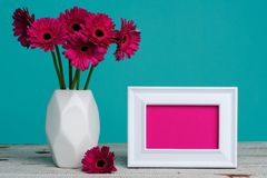 Happy Mother`s Day, Women`s Day, Valentine`s Day or Birthday Pastel Candy Blue Coloured Background. Dark pink gerberas in a vase. Happy Mother`s Day, Women`s stock image