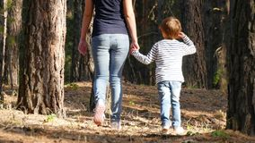 Happy mother and son walking through the woods, holding hands. The family spends time relaxing outdoors on a sunny day. stock footage