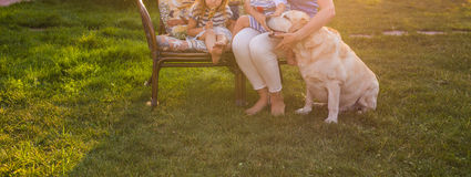 Happy mother and two children with Golden Retriever dog in the garden, close-up royalty free stock image
