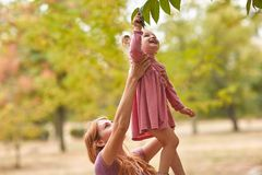 Happy mother walks with the child in the park in sunny day, touch and consider leaves on a tree stock photography