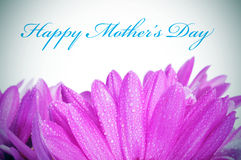 Free Happy Mothers Day Stock Photo - 30185780