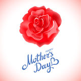 Happy Mothers Day Beautiful Blooming Red Rose Flowers on White Background. Greeting Card Royalty Free Stock Images
