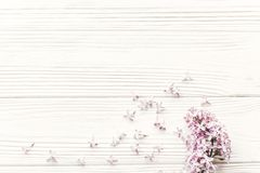 Happy mothers day. beautiful lilac flowers on rustic white woode Royalty Free Stock Image