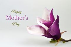 Happy Mothers Day card with magnolia flower on wooden background stock image