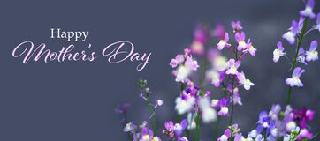 Free Happy Mothers Day Card. Spring Flowers In The Garden Royalty Free Stock Photo - 169119595