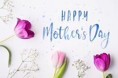Happy mothers day composition. Flowers on white background. Studio shot. Royalty Free Stock Photography