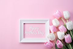 Happy mothers day concept. Top view of pink tulip flowers and white picture frame with happy mothers day text on pink pastel. Background. Flat lay stock photo