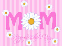 Happy Mothers Day with Daisy Flowers Royalty Free Stock Image