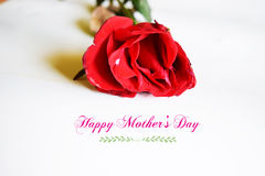 Happy mothers day with flower Royalty Free Stock Image
