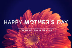 Happy Mothers day greeting card Stock Photo