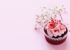Happy Mothers Day!. Dessert cupcakes and gift on holiday for mom royalty free stock images