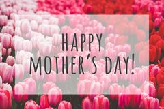 Happy mothers day. Text on blurred flowers background royalty free stock photography