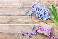 Happy Mothers Day holiday greeting card with hyacinth flowers and gift or present box on wooden rustic table. Top view. royalty free stock photo
