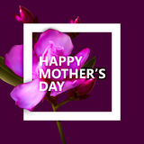 Happy Mothers Day label with white square frame and flowers Stock Image