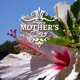 Happy Mothers Day lettering on blurry floral Stock Image