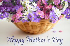 Happy Mothers Day. Mothers Day flowers in the basket. Happy Mothers Day. Close up of Mothers Day flowers in the basket stock photos