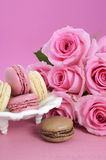Happy Mothers Day Pink Roses and Macarons. Royalty Free Stock Image