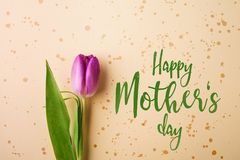 Happy mothers day sign and flower composition. Studio shot. Stock Photography