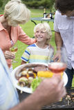 Happy multi-generation family enjoying barbecue and wine Royalty Free Stock Image