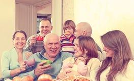 Happy multigeneration family Royalty Free Stock Photos