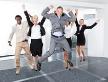 Happy Multiracial Businesspeople. Group Of Multiracial Businesspeople Enjoying Their Success royalty free stock photos