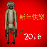 Happy New Chinese monkey Year, 2016. In red background Stock Photos