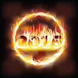 Happy new 2015 fire year. Vector illustration Stock Photo