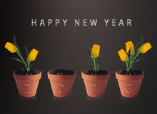 Happy new year 2013. Conceptual image pots with yellow tulip flowers making 2013 year numbers Royalty Free Stock Images