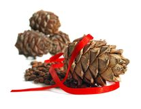 Happy New Year!. New year still life with nuts, cones and red ribbon on a white background Stock Photos