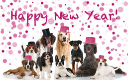 Free Happy New Year Royalty Free Stock Photos - 45962238