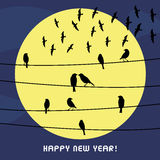 Happy new year 2014 card15. Birds on the wire. Inlove card in New year day Stock Images