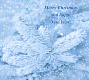 Happy New Year card with frost pine and snow. Stock Image