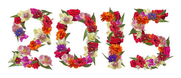 Happy New Year 2015 colorful flowers. Happy New Year 2015 with many colorful flowers and leaves Royalty Free Stock Photography