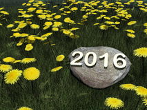Happy new year 2016 - 3D render. Happy new year 2016 on a rock in grass with dandelion flowers - 3D render Royalty Free Stock Image