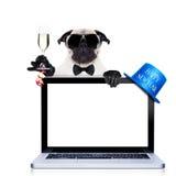 Happy new year dog Royalty Free Stock Image