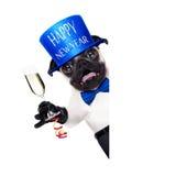 Happy new year dog Stock Photography
