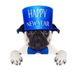 Happy new year dog Stock Photos