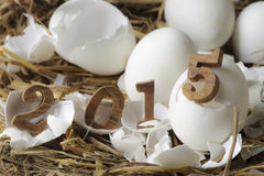 Happy New Year 2015, eggs concept Stock Photography