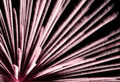 Happy New Year fireworks background. Happy New Year fireworks on dark background royalty free stock photo