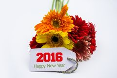 Happy new year 2016 with flower and tag isolated on a white background Royalty Free Stock Images